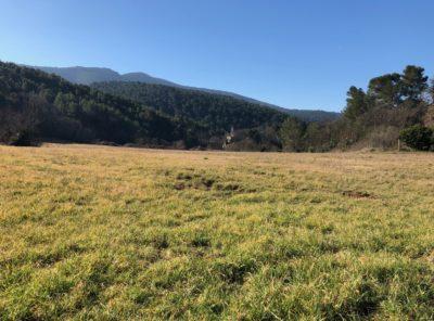 Terrain agricole à proximité du village de 5 hectares