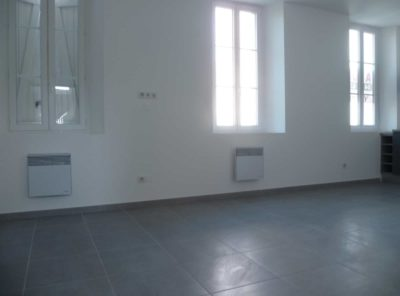 Grand appartement Type 2 de 45m²